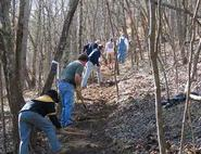 Picture of trail building