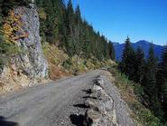 USFS Road