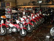 Row of Honda dirt bikes image